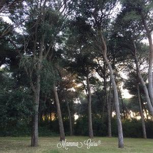Serra degli Alimini 1: vacanze Family Friendly nel cuore del Salento