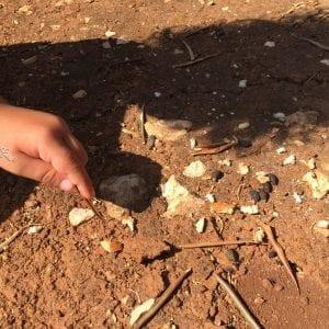 Natura e Bambini: una Maestra di Vita preziosa